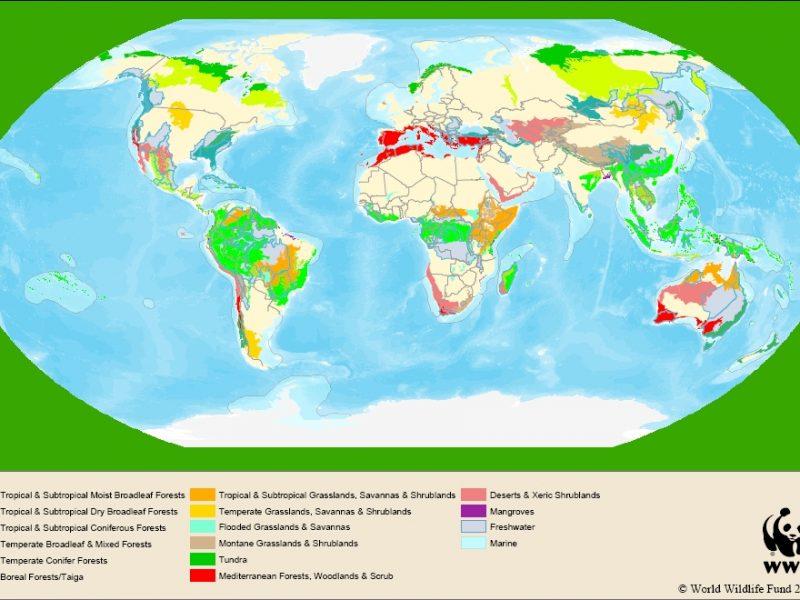 Carte des points chauds de la biodiversité